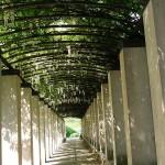 Parc et jardin de Bercy Paris