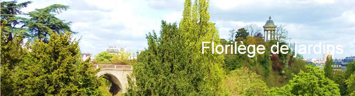 florilege-jardins